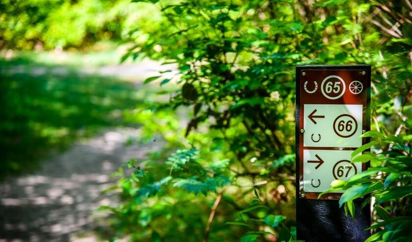 <p>Een routepaaltje voor de ruiter- en menroute.(Foto: Petra Lenssen)</p>