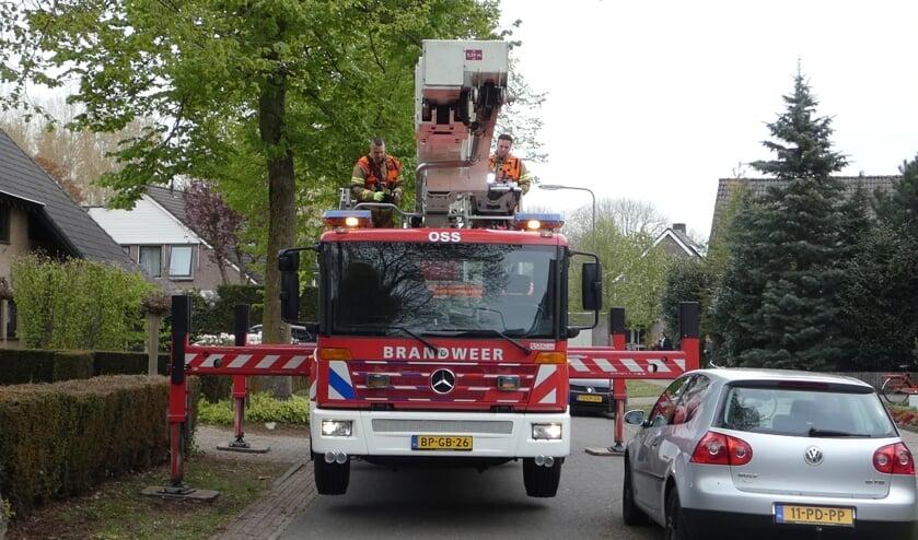 Brandweer haalt poes van het dak van woning aan Woldreef. (Foto: Thomas)