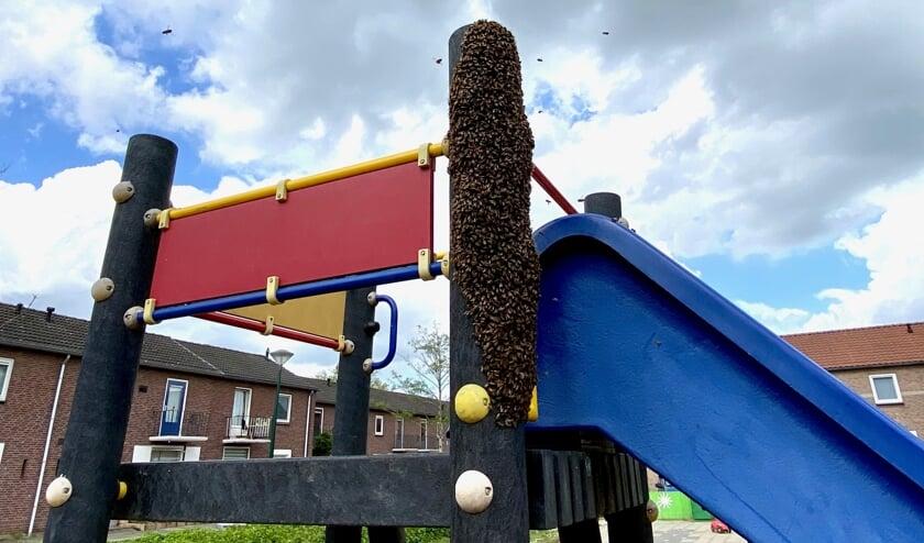 De wespen hebben zich massaal verzameld bij de glijbaan.