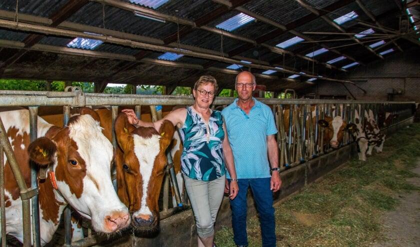 <p>Ad en Petra van de Meerakker samen met hun koeien.</p>