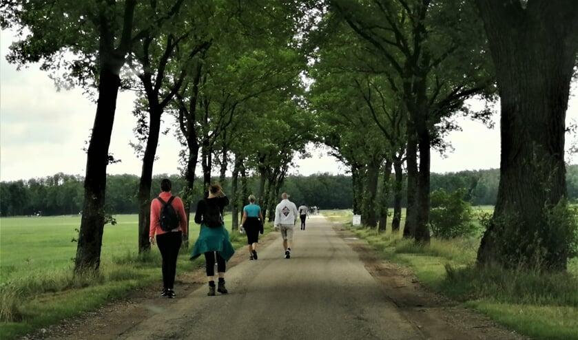 Wandelaars in de polder van Macharen.