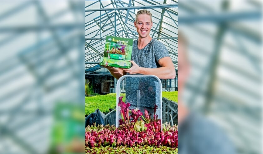 <p>Chris van der Velde verkoopt terrariums met vleesetende planten als de oplossing tegen muggen. Foto: Frank de Roo </p>