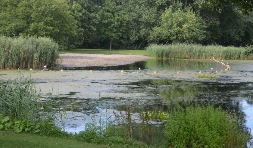Zwemmen in het water van Wevershoek wordt ontraden