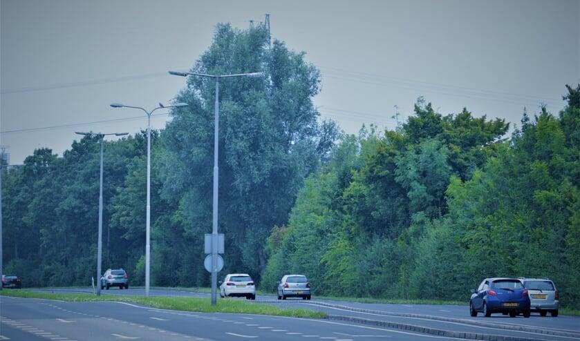Tussen de Randweg en A38 wordt veel lawaai ervaren