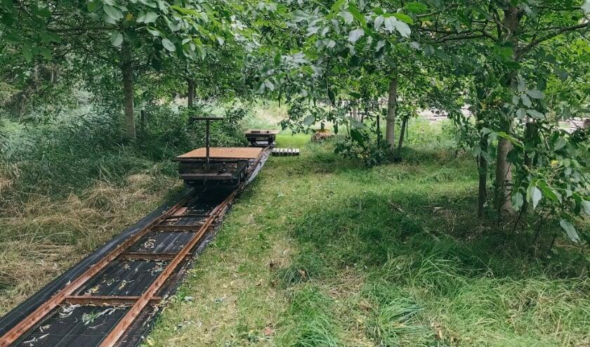 <p>Natuurgoed Ziedewij, een van de deelnemende locaties.</p>