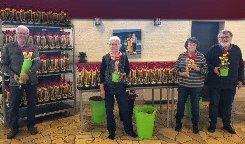 <p>Vrijwilligers zorgden ervoor dat de plantjes klaar stonden om ze in Albrandswaard te bezorgen.</p>