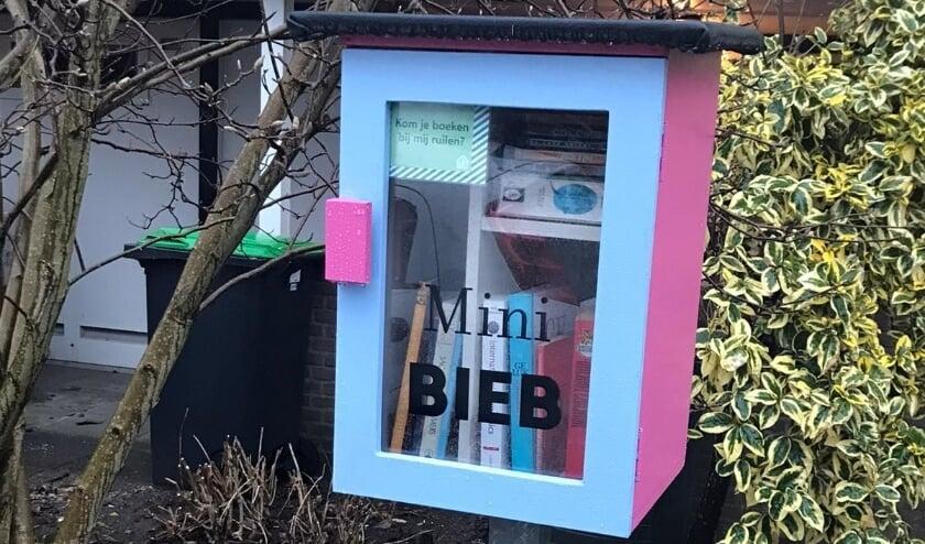 <p>De minibieb aan de Wilhelminastraat.</p>