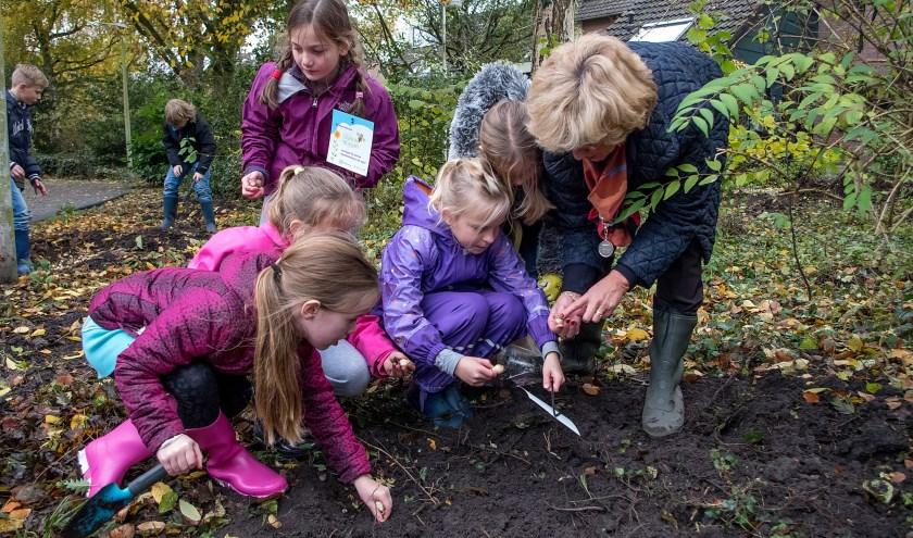 Burgemeester Driessen assisteert kinderen van basisschool Elckerlyc bij het bollen planten. | Foto: J.P. Kranenburg