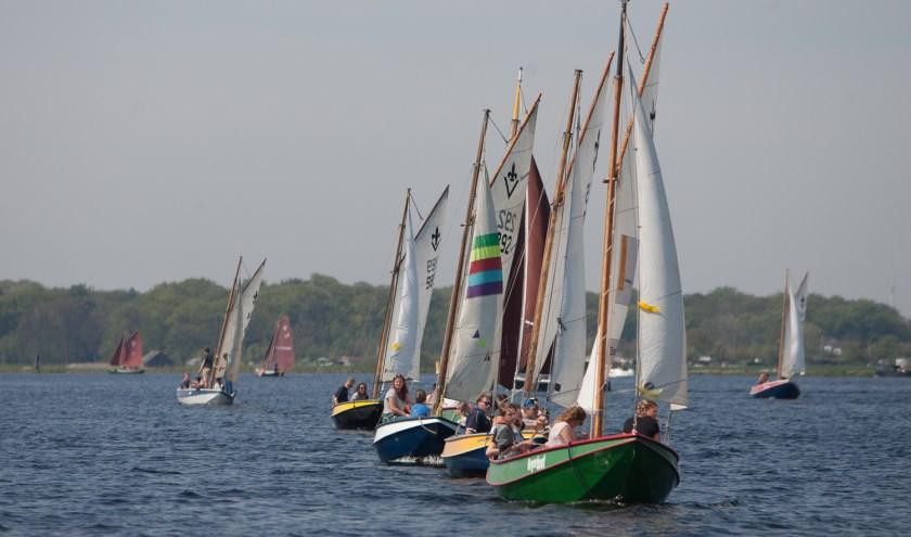 Aan de Kaagcup Zeilwedstrijden doen waterscouts mee.