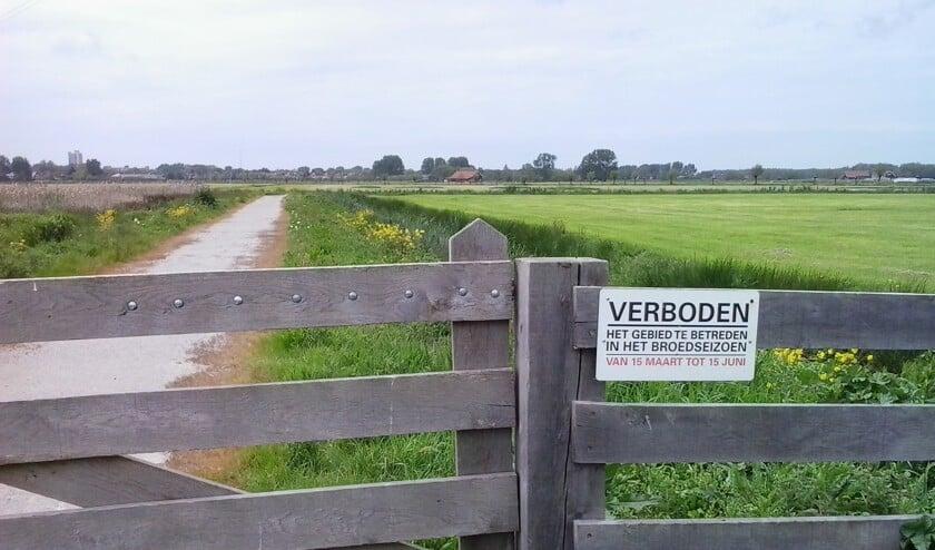 De Boterhuispolder is in het broedseizoen afgesloten voor wandelaars en fietsers om weidevogels rust te geven. Maar het weidevogelvriendelijk beheer van de velden laat veel te wensen over.
