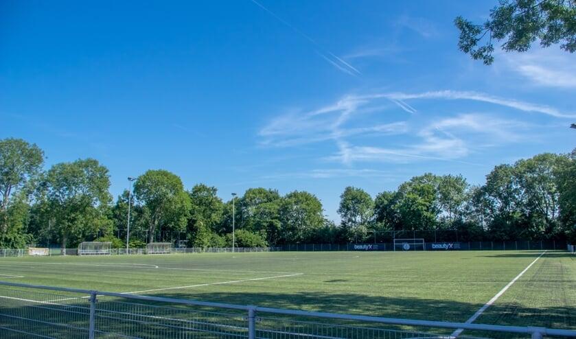 <p>RCL is alleen gebruiker van de voetbalvelden in De Bloemerd, het onderhoud en de vervanging komt voor rekening van de gemeente. </p>
