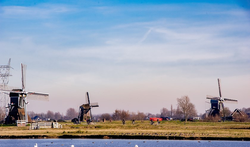V.l.n.r. de Munnikkenmolen, de Achthovensemolen en de Doeshofmolen. |  Archieffoto: J.P. Kranenburg