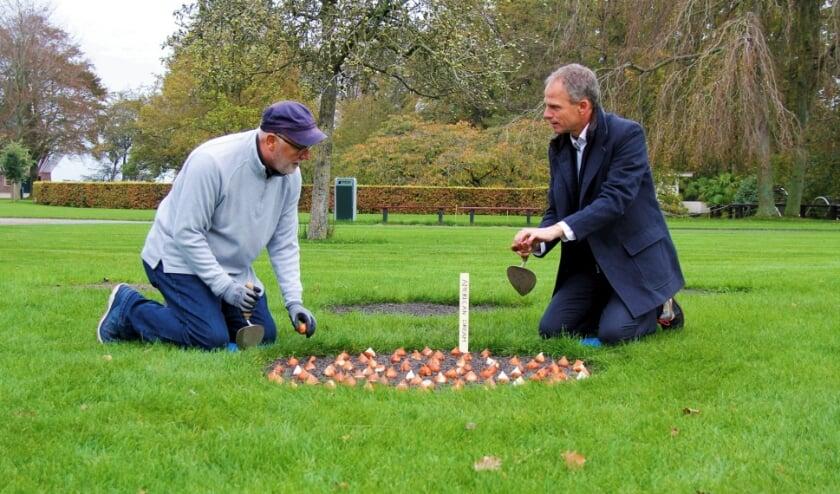 Ambassadeur Pete Hoekstra en Keukenhof-directeur Bart Siemerink planten American Dream-tulpenbollen.