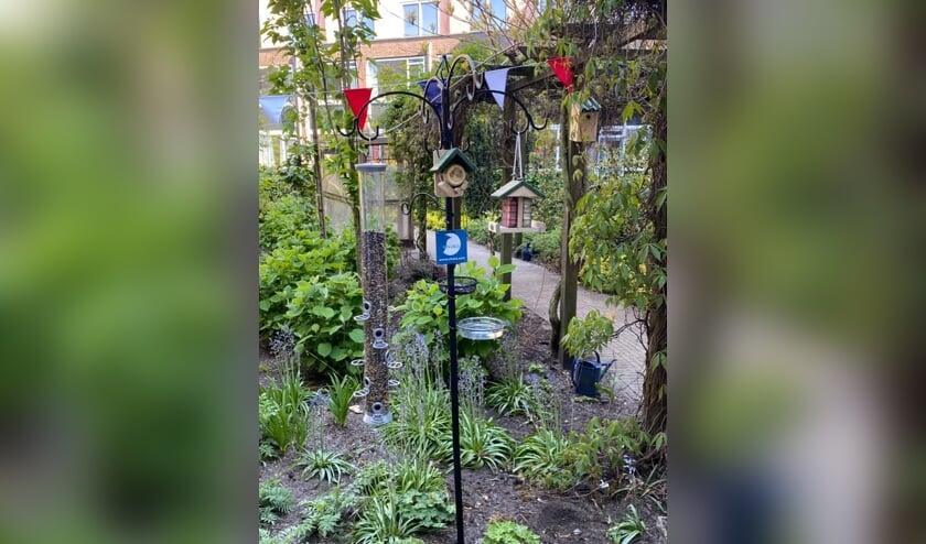 De vogelvoederplekken werden met allerhande materialen gerealiseerd en bieden zo hopelijk veel vogels vertier. En daarmee  bewoners van een verpleeghuis een mooi uitzicht.