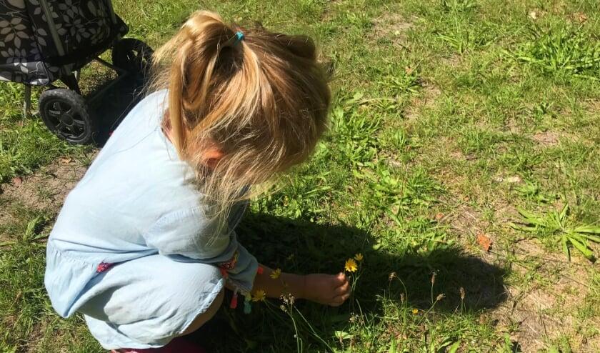 In de natuurchallenge gingen de kinderen bijvoorbeeld op zoek naar iets wat lekker ruikt.