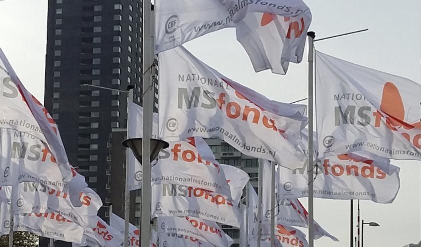 <p>Door corona hebben veel activiteiten rond het MS Fonds stilgelegen, maar MS zelf staat niet stil.</p>