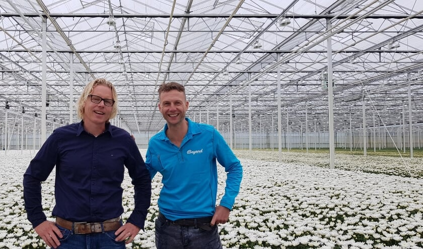 Links Dirk van Vuurde, Royal FloraHolland productmanager Chrysant en Alstroemeria.