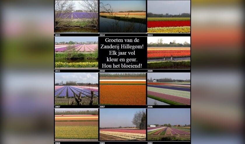<p>Fotobijschrift: De Zanderij. | Foto: Facebook, Behoud Zanderijen Hillegom.</p>