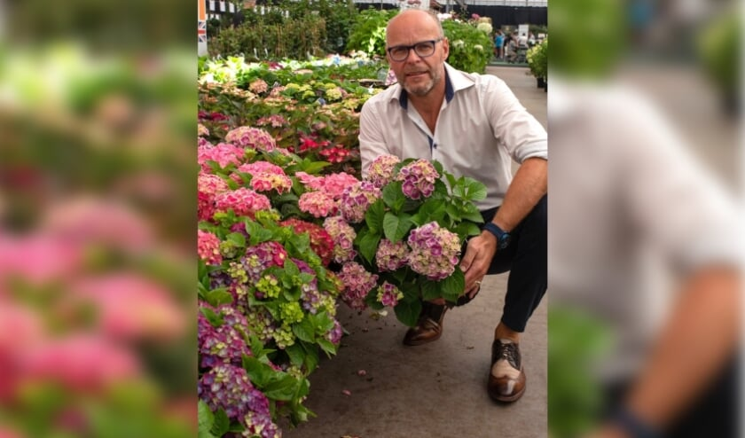 <p>Michel Verbeek, Royal FloraHolland productmanager </p>