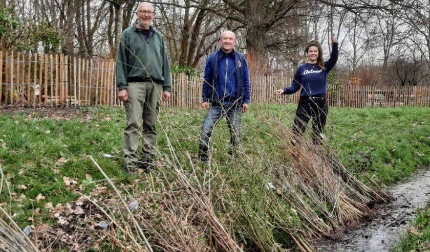 <p>Marga Witteman van Meer Bomen Nu met enkele vrijwilligers. | Foto: PR</p>