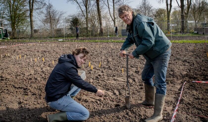 <p>Elke aardappel krijgt zijn eigen gat in de grond.</p>