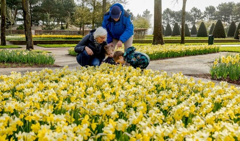 <p>Op vrijdag genoten deze bezoekers van de bloemenpracht, de rust en de ruimte. | Foto: pr</p>