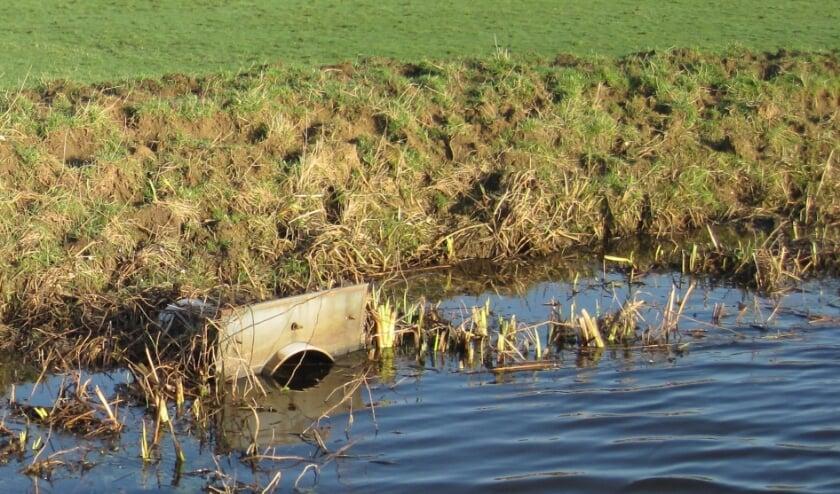 Trapschade ontstaat als bijvoorbeeld grootvee op een dijk loopt.