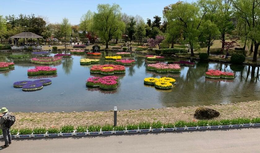 <p>De eilandjes met tulpen zijn altijd een publiekstrekker.&nbsp;</p>