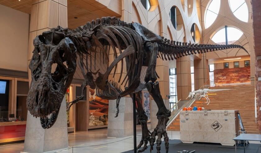 <p>Ook het Leidse museum Naturalis is partner van Verwonder om de hoek. Naturalis is de winnaar van de European Museum of the Year Award 2021.</p>